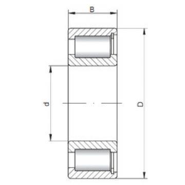 Rodamiento NCF2238 V ISO