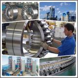 NFP38/630Q4 Oil Drilling Equipment Bearing